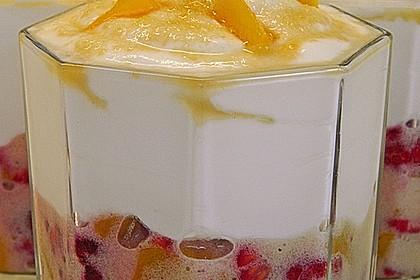 Joghurt - Frucht - Speise 2
