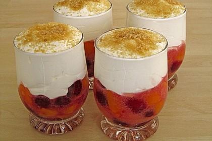 Joghurt - Frucht - Speise 7