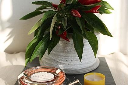 Erdbeer - Rhabarber - Marmelade mit Vanille 14