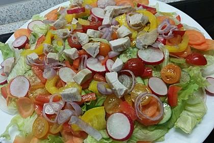 Bunter Salat mit scharfen Putenstreifen 13