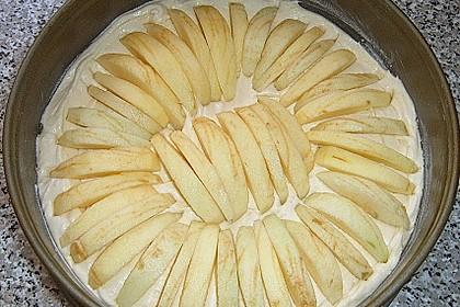 Apfel - Streusel - Kuchen 15