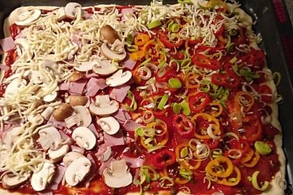 Italienischer Pizzateig 117