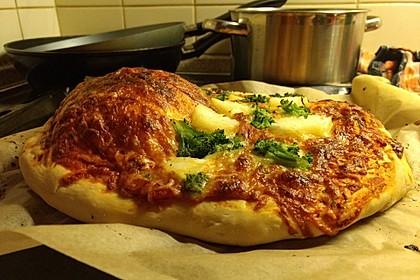 Italienischer Pizzateig 62