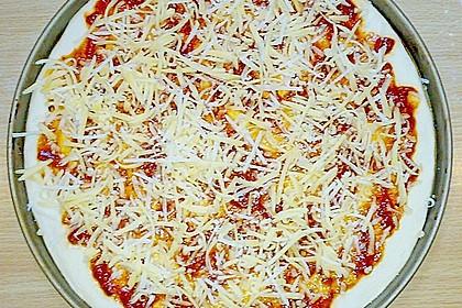 Italienischer Pizzateig 375