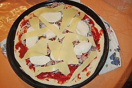 Italienischer Pizzateig 315