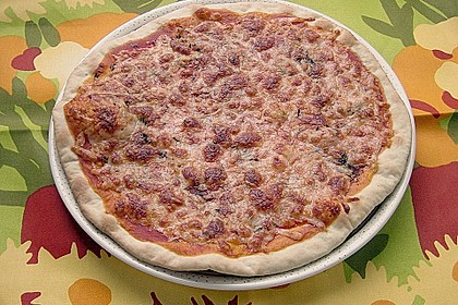 Italienischer Pizzateig 285