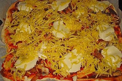 Italienischer Pizzateig 242