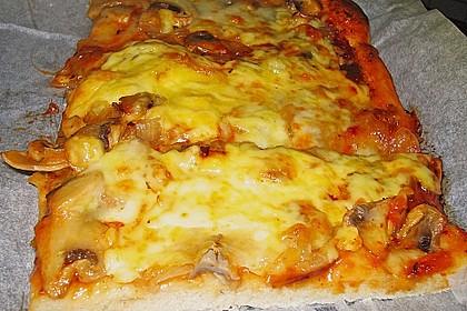 Italienischer Pizzateig 316