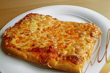 Italienischer Pizzateig 161