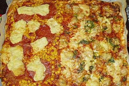 Italienischer Pizzateig 351