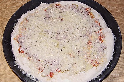 Italienischer Pizzateig 380