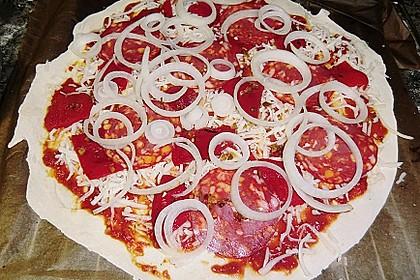 Italienischer Pizzateig 298