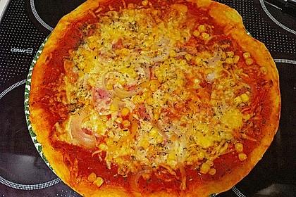 Italienischer Pizzateig 233