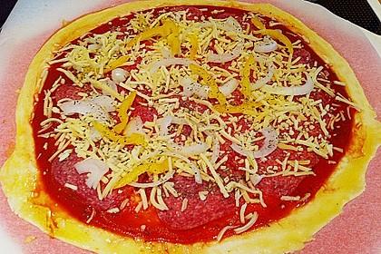 Italienischer Pizzateig 353