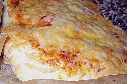 Italienischer Pizzateig 137