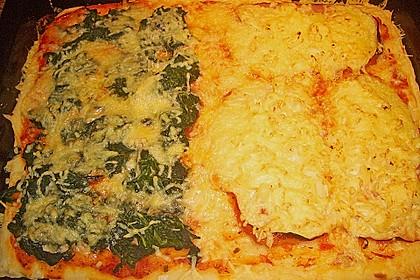 Italienischer Pizzateig 310