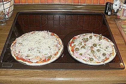Italienischer Pizzateig 341