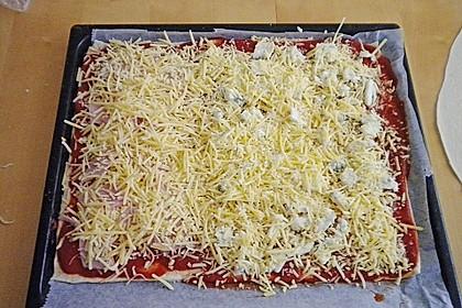 Italienischer Pizzateig 250