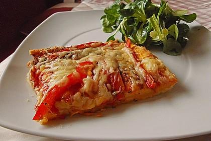 Italienischer Pizzateig 67