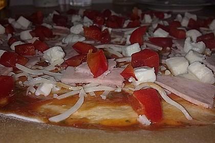 Italienischer Pizzateig 328