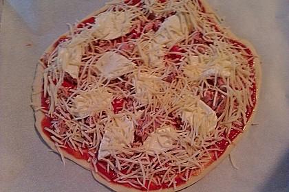 Italienischer Pizzateig 313