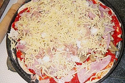 Italienischer Pizzateig 339