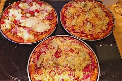 Italienischer Pizzateig 64