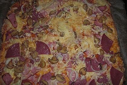 Italienischer Pizzateig 370
