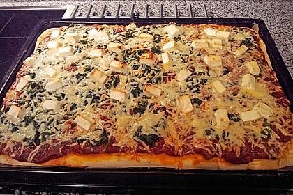 Italienischer Pizzateig 259