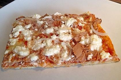 Italienischer Pizzateig 256