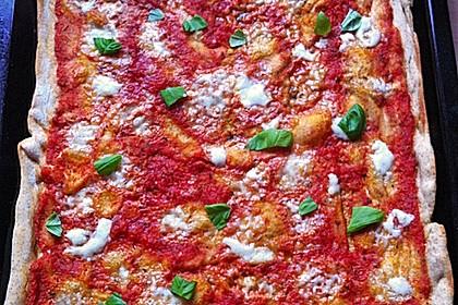 Italienischer Pizzateig 213
