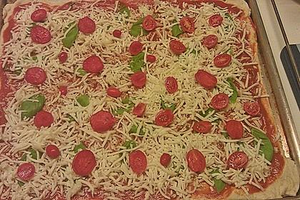 Italienischer Pizzateig 243