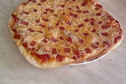 Italienischer Pizzateig 314