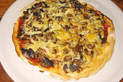 Italienischer Pizzateig 270