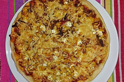 Italienischer Pizzateig 151