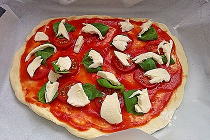 Italienischer Pizzateig 60