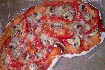 Italienischer Pizzateig 223