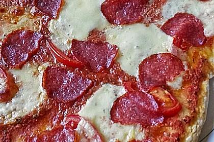 Italienischer Pizzateig 219