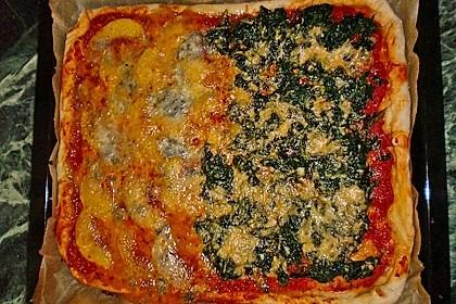 Italienischer Pizzateig 304