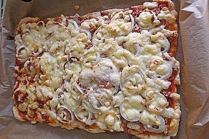 Italienischer Pizzateig 319