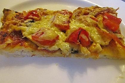 Italienischer Pizzateig 153