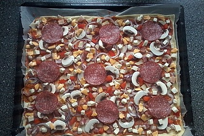 Italienischer Pizzateig 236