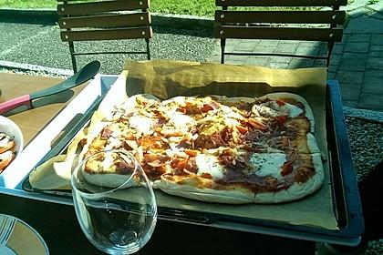 Italienischer Pizzateig 14
