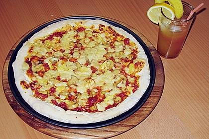 Italienischer Pizzateig 349