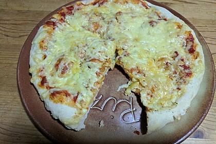 Italienischer Pizzateig 275