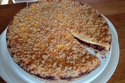Zwetschgen - Käse - Kuchen (Bild)