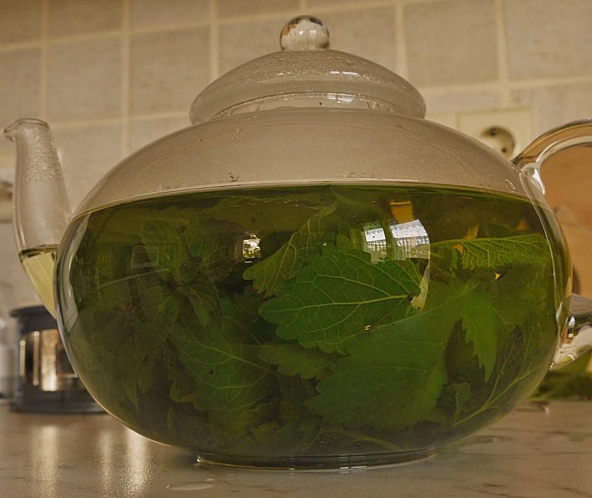Pfefferminz - Melissen - Tee