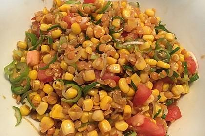 Roter Linsen - Salat 17
