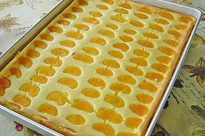 Käsekuchen mit Mandarinchen 10