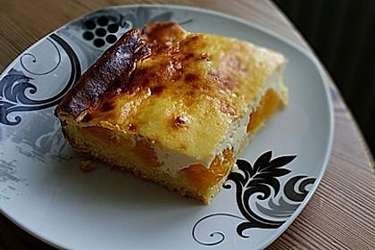 Käsekuchen mit Mandarinchen 48